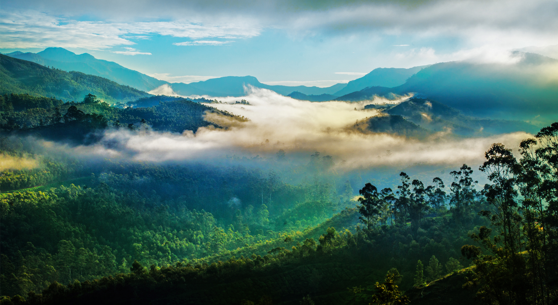 mountain landscapes, LANDSCAPE IN MUNNAR, Kerala Tourism, Landscapes of Munnar, munnar landscape,